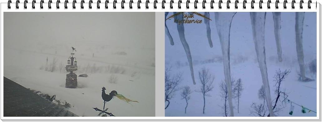 Ny vinter…?