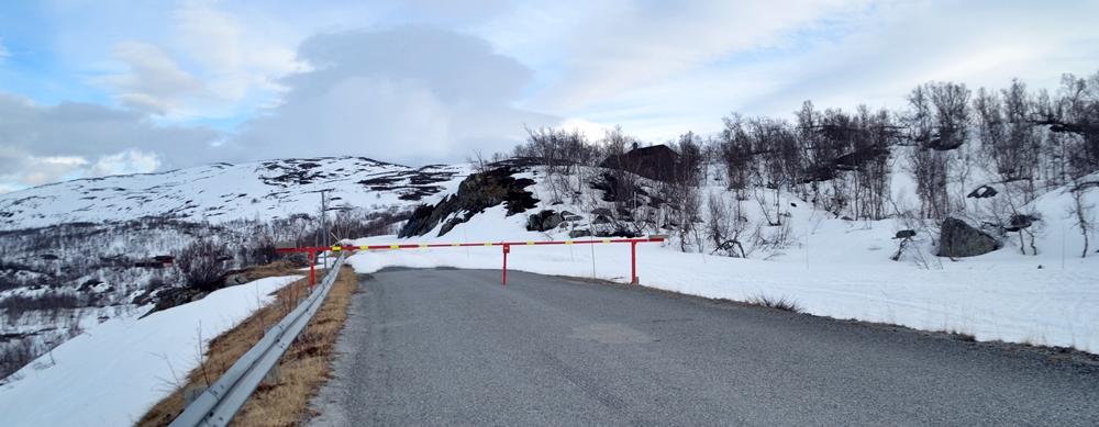 Vårrapport frå fjellheimen…