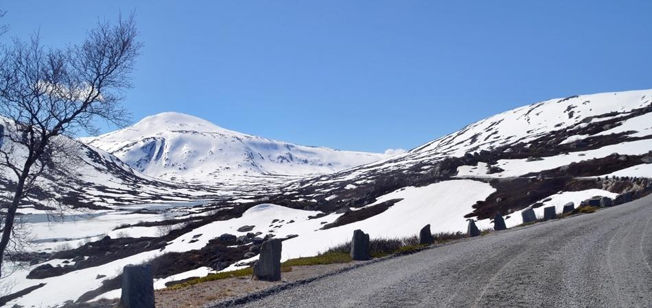 Strynefjellet landskapsvernområde breheimen