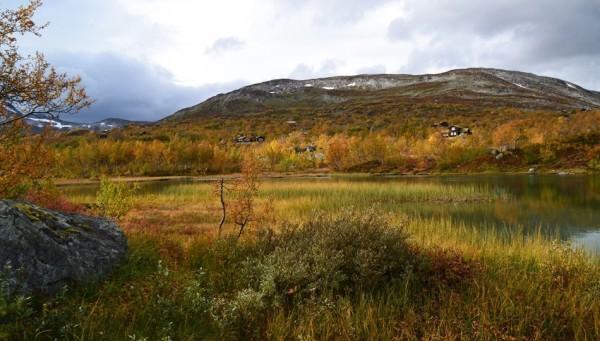 haustfarger ved Grøntjønn 24.09.15