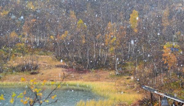 snø 09.10.15
