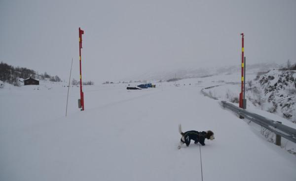 vinterp-plass 02.12.15