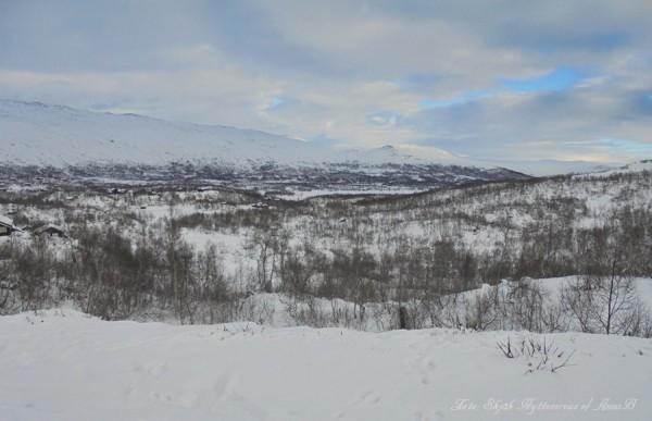 grotli-grotlivatnet-strynsfjellvegen-13-11-16