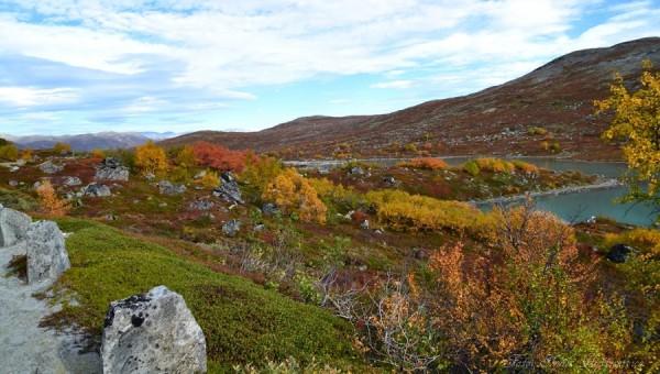 grotli-heillstugu-strynsfjellvegen-13-09-16