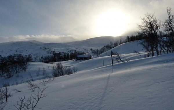 nysnø og sol 30.01.16