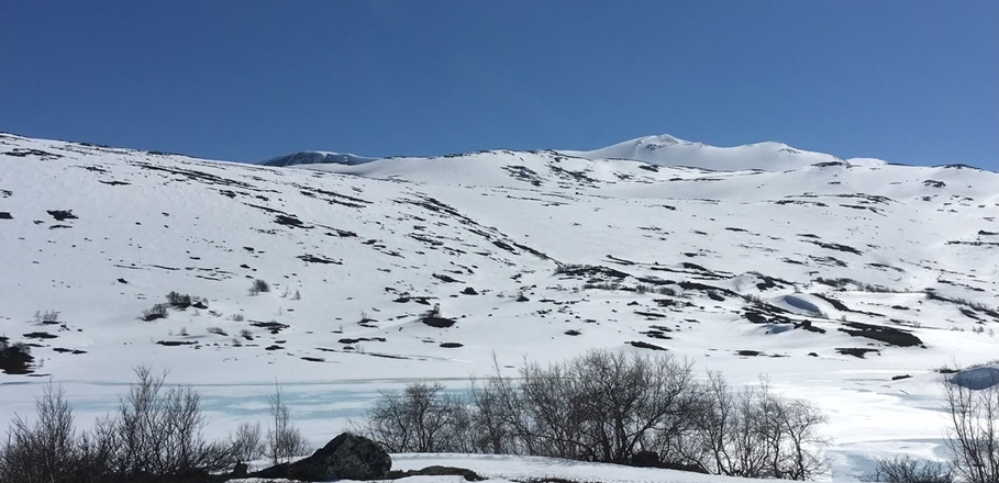 Framleis snø og skiføre – for den som vil…!