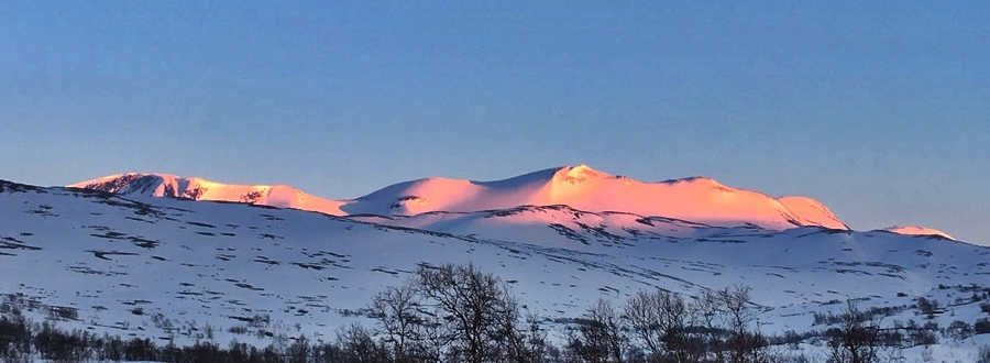 skridulaupen i solnedgang 16.05.10