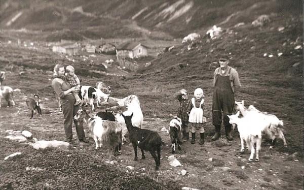 tundradalen 1958