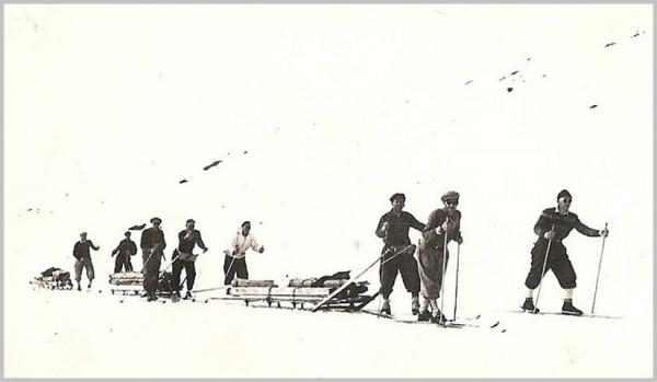 transport tømmer Ola-Bu Hamsedalen 3