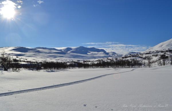 grotli hyttegrend skjåkfjell skridulaupen 03.03.17