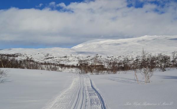 grotlivassrunda grotli-skiheiser krosshø 27.02.17