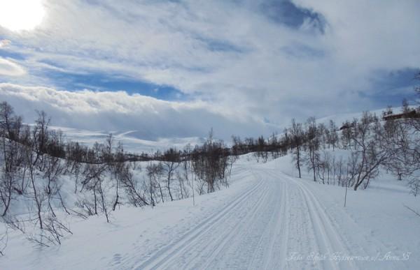 skjåkfjell skridulaupen strynsfjellvegen grotli 13.03.17