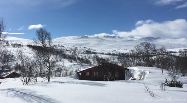 grotli hyttegrend skridulaupen skjåkfjell 23.04.17